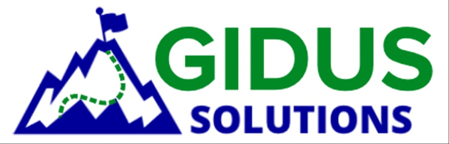 Gidus Solutions LLC Strategic and Operational Consultants